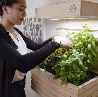 Gartenzwerg Seedrs Equity Crowdfunding Campaign
