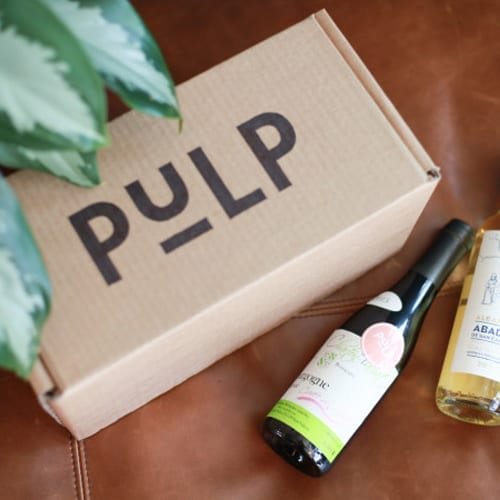 Pulp Crowdfunding Campaign Case Study